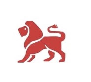 lionstore